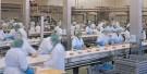 factory jobs