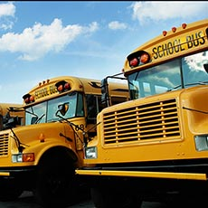School bus driver job icon