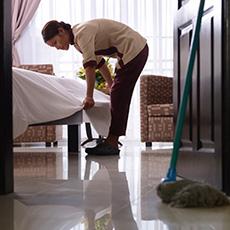 Housekeeper job icon